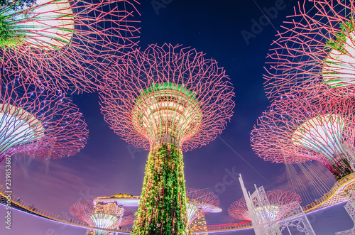 Night view of Supertrees at Gardens by the Bay. The tree-like structures are fitted with environmental technologies that mimic the ecological function of trees..