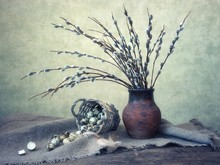Spring Still Life With Willow Branches