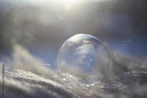 Fototapety, obrazy: Frosted bubble