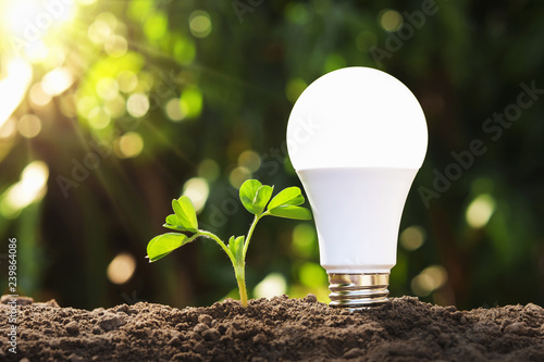 led light with young plant on soil Canvas-taulu