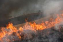Cal Fire Training
