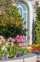 Flower Gardens In Spring With ...