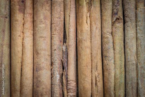Fényképezés seasoning, natural cinnamon, sticks, close-up