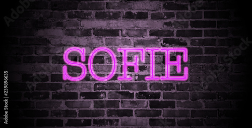 Obraz na plátně first name Sofie in pink neon on brick wall