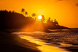 canvas print picture - Tropical sunset at the beach with palms
