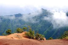 Mist Enshrouded Klalau Trail O...