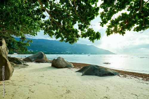 Fotografie, Obraz  Seychelles tropical beach, beau vallon beach, mahe island