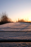 Fototapeta Las - low-angle and close-up of frost on a jetty
