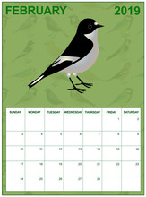 February 2019 Calendar On English With An European Pied Flycatcher In The Middle