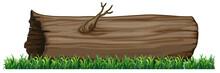 Isolated Tree Log On White Background