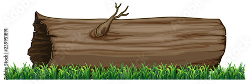 Canvas Prints Kids Isolated tree log on white background