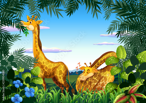 Poster Kids Giraffe in the nature