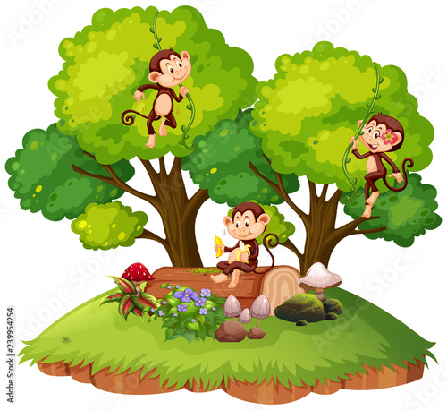 Poster Kids Monkey on isolated nature