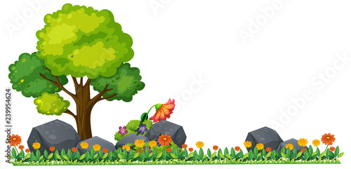 Poster Kids Isolated plant on white background