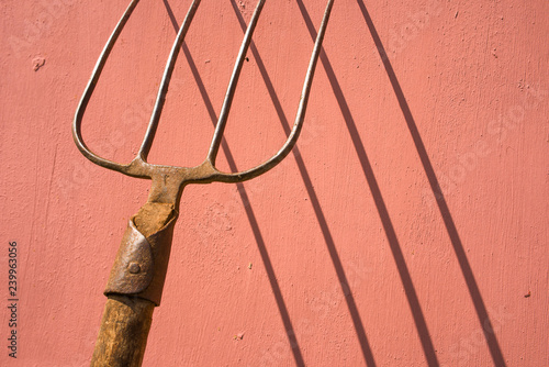 Fotomural Old pitchfork with shadow