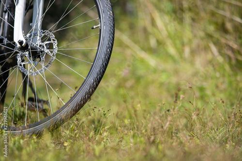 Fotografie, Obraz Bike tyre on a trip, meadow