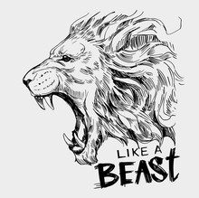 Head Of Roaring  Lion. Hand Drawn Illustration Converted To Vector