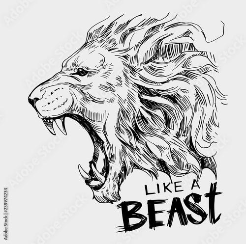 Naklejka premium Głowa ryczącego lwa. Ręcznie rysowane ilustracja przekonwertowana na wektor
