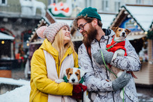 Hipster Couple: Man And Woman Walking With Their Two Dogs Jack Russel Terrier In City Street During Winter Snowfall Day. Acquaintance, Dog Wedding, Love At First Sight, Pets Lovers Concept.