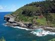 Coast of Hawaii 1