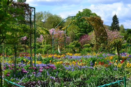 Foto  France Giverny Claude Monet garden in spring, flowers and lakes sea rose