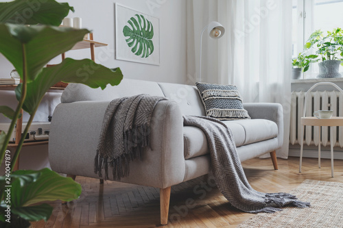 Photo Stylish  scandinavian living room with design sofa, poster, plants, bookstand, coffee table, cozy blanket and mock up frames
