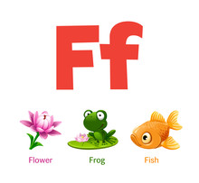 Cute Children ABC Animal Alphabet Flashcard Words With The Letter F For Kids Learning English Vocabulary.