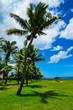 Fiji Island Paradise