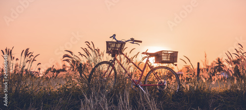 Photo sur Aluminium Velo beautiful landscape image with Bicycle at sunset
