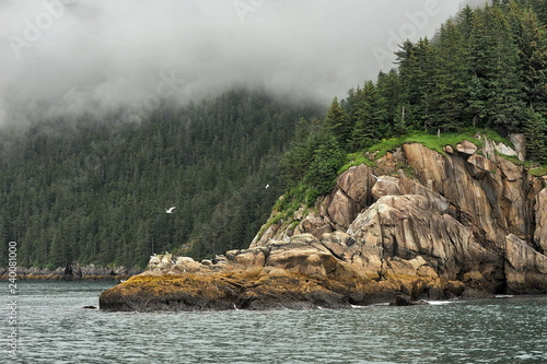 Alaska. Kenai Fjords. Landscapes.