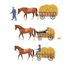 Horse-drawn Cart With Hay