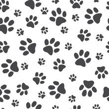 Vector Illustration Animal Paw Track Seamless Pattern - Backdrop With Monochrome Silhouettes Of Cat Or Dog Footprint. Cute Texture Of Black Print Of Kitten Or Puppy Trace Shapes.