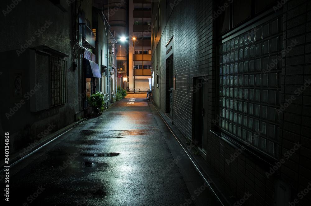 Fototapety, obrazy: 雨上がりの町