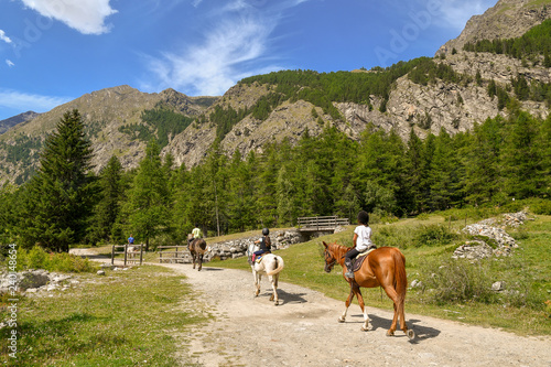Fototapeta Scenic view of a mountain landscape with tourists horseback riding in a path, pine forest and rocks peaks in summer, Gran Paradiso National Park, Aosta Valley, Italy obraz