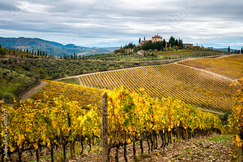 Fotografiet  Chianti Region, Tuscany. Vineyards in autumn. Italy