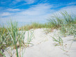 Sandy dunes on a beach of Baltic Sea, Germany