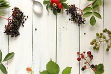 Wildfrüchte Im Herbst Tisch B...