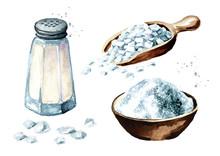 Salt Set. Watercolor Hand Draw...