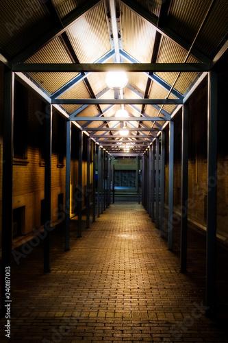Fotografie, Tablou  illuminated corridor at night