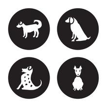4 Vector Icon Set : Anatolian Shepherd Dog Dog, American Leopard Hound Water Spaniel Hairless Terrier Dog Isolated On Black Background