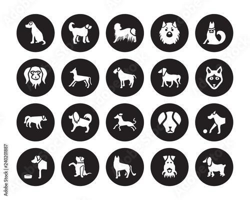 20 vector icon set : Vizsla dog, Fox Terrier German Shepards Goldador Golden Ret Fototapet