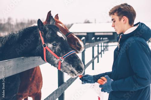 Teen boy feeding a horse on the ranch