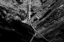 Black And White Of Climbing Rope And Carabiner (karabiner) On Rock Climbing In The Lake District, Cumbria