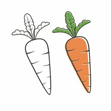 Carrot Vector Isolated On White With Outline Drawing