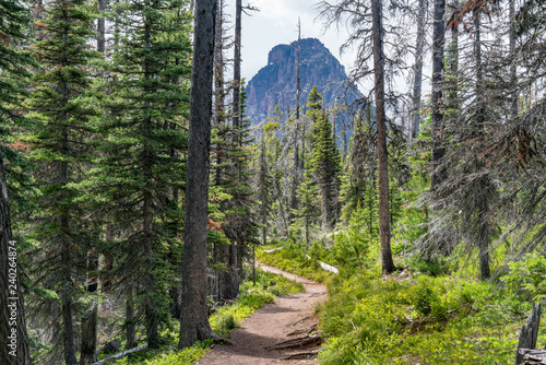 Vászonkép Hiking Trail in Glacier National Park