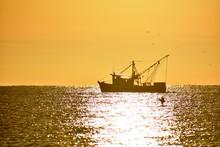 Sunrise Silhouette Shrimper