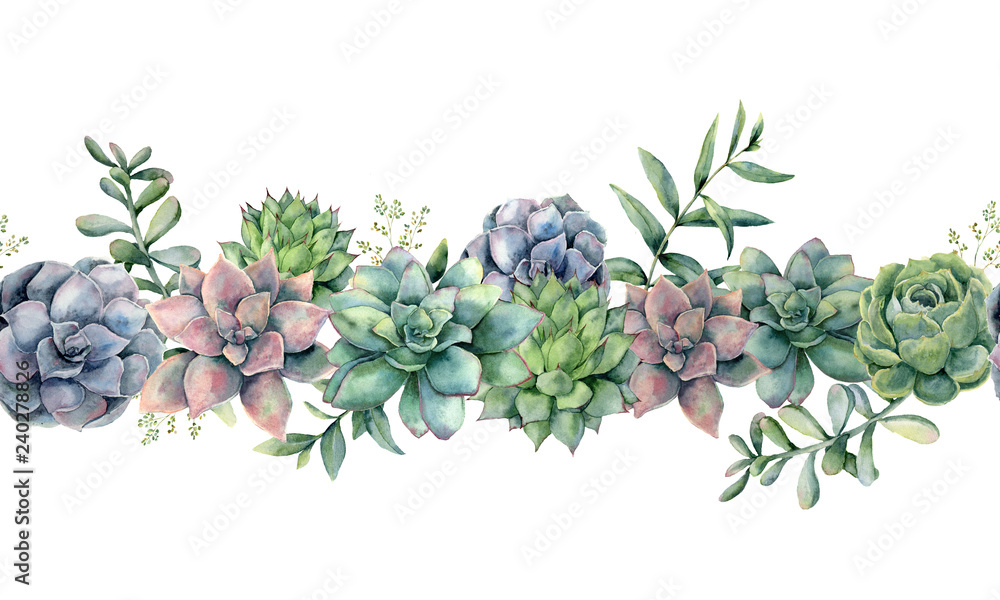 Fototapeta Watercolor succulents seamless bouquet. Hand painted green, violet, pink cacti, eucalyptus leaves and branches isolated on white background.  Botanical illustration for design, print. Green plants