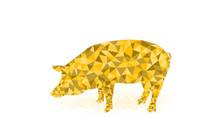 Golden Pig Vector Illustration ,symbol Of 2019, Pig Icon Low Poly Design