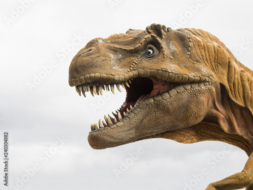 Head profile of a Tyrannosaurus rex (T-rex) model