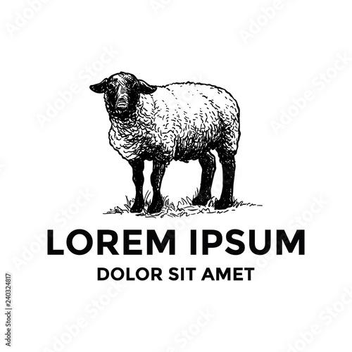Fototapeta premium Szablon Logo ręcznie rysowane owiec